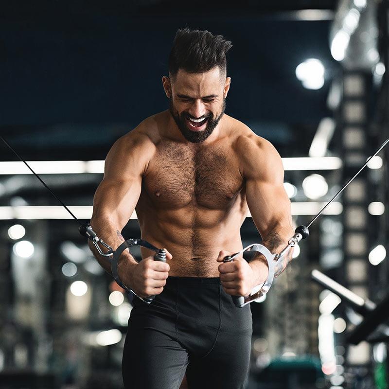 Sporteverest fitnes